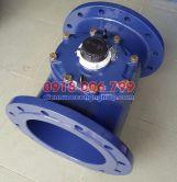 Đồng hồ nước Sensus DN300