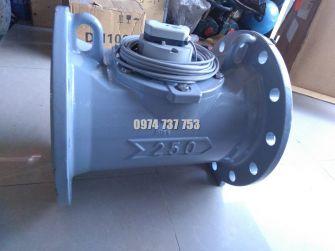 Đồng hồ nước Itron DN80, DN100, DN150, DN200, DN250, DN300