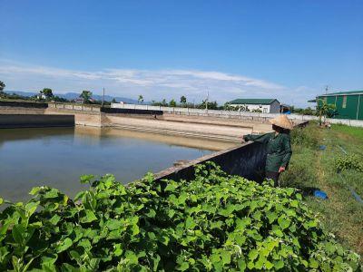 Nhức nhối xử lý nước thải cụm công nghiệp tại Hà Tĩnh
