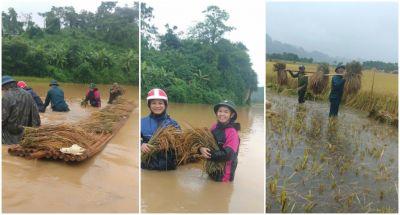 Công an Nghệ An kịp thời giúp Nhân dân phòng, chống mưa lũ