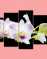 mau-tranh-hoa-phong-lan-dep-treo-phong-khach-sang-trong-amia261