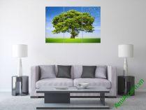Tranh cây cổ thụ giữa đồng cỏ xanh, nét đẹp tự nhiên AmiA358