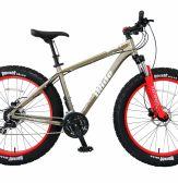 Xe đạp thể thao Asama AMT 31