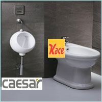 TIỂU NAM CAESAR,TIỂU NỮ CAESAR