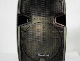 Loa SoundLink F82-100W