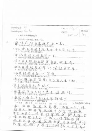 V2009420自由短文  越南旗袍 (45)