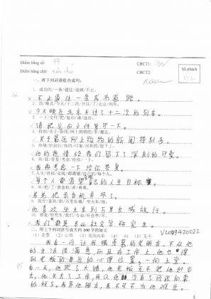 V2009420自由短文  越南旗袍 (49)