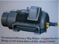 Động cơ tiết kiệm điện cỡ lớn Teco - PEBM