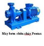 Máy bơm chữa cháy Pentax