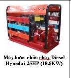 Máy bơm chữa cháy Diesel Hyundai 25HP (18.5KW)