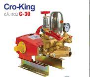 Đầu bơm Cro-king C-30 (2 Hp)