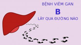 Viêm gan B thường lây nhiễm qua những đường nào?