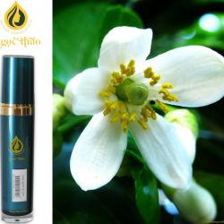 Hoa Bưởi - Grapefruit flower Oil
