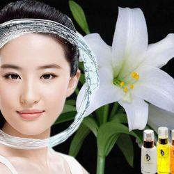 Dầu Massage mặt hoa ly