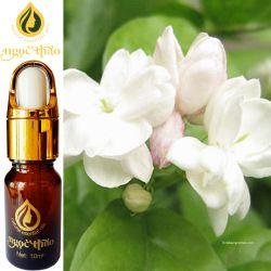 Tinh dầu Hoa Nhài - Jasmine oil