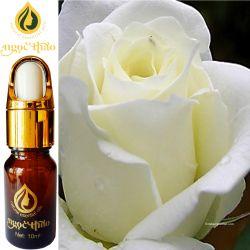 Tinh dầu Hoa Hồng bạch - White rose Oil