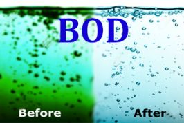 Nhu cầu Oxy sinh hóa BOD