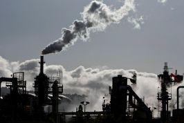 Trí tuệ nhân tạo giúp chống lại biến đổi khí hậu như thế nào?