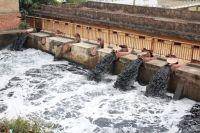 Thực trạng và giải pháp ô nhiễm nguồn nước tại Việt Nam