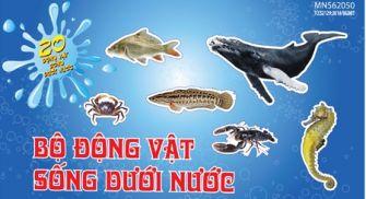 Bộ nhận biết động vật dưới nước PA5832