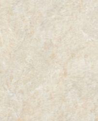 Gạch Granite kỹ thuật số UB8806