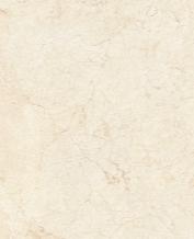 Gạch Granite kỹ thuật số ECO-S821