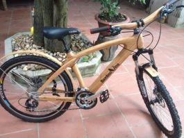 Xe đạp thể thao tre