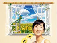Decal cửa sổ hoa hướng dương số 1