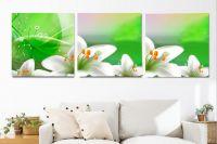 Bộ tranh ghép hoa ly