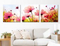 Bộ tranh ghép hoa cúc đa sắc ( size 50*50 cm)