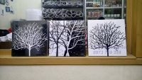 Bộ ba cây trắng đen