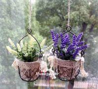 Giỏ hoa oải hương (trắng + tím)