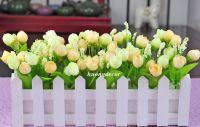 Hàng rào gỗ trắng có hoa