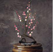 Chậu đào bonsai
