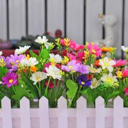Hàng rào gỗ trắng ( hoa cúc đa sắc)