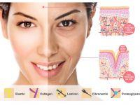 Hiểu về da ! Cấu tạo và chức năng làn da.
