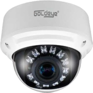 Camera ip dome  Goldeye NFD741-IR