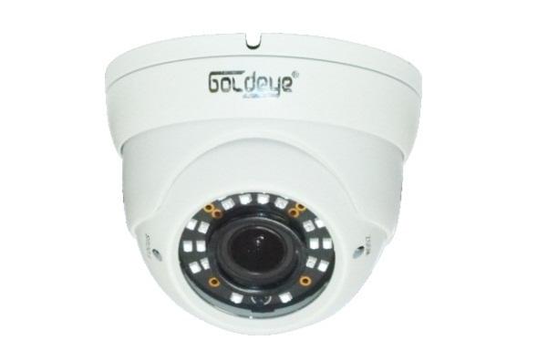 Camera dome goldeye HZD238-IR