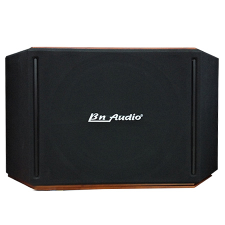 LOA BN AUDIO BN 505 II