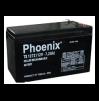 Ắc quy Phoenix 12V