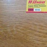 Wilson MS19