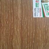 Mã sàn gỗ Thaione-TL1221