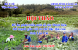 Hội thảo phát triển một số cây Dược liệu thế mạnh trên địa bàn tỉnh Lào Cai
