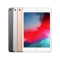 iPad mini 5 2019 - WiFi 4G 256GB
