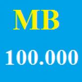 Mobilefone 100