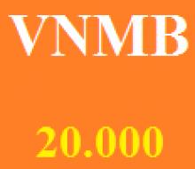 Vietnammobil 20