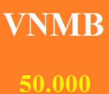 Vietnammobil 50