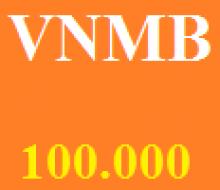 Vietnammobil 100