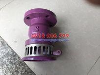 Van rọ bơm SB Đài Loan (Foot valve SB, Luppe SB, Rọ hút SB)