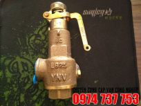 Van an toàn (Safety valve) YNV